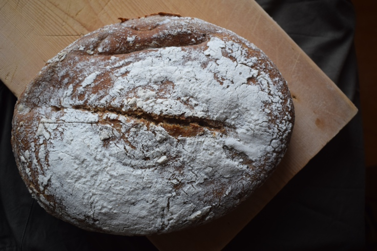 Fresh sourdough loaf - Crumbs and Roses blog