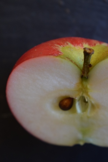 Apple half 2 - still life photography from Crumbs and Roses blog
