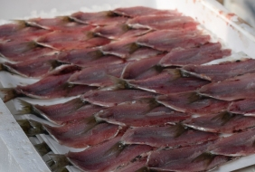 Anchovies prepared at the Fish market in Venice - Crumbs and Roses blog