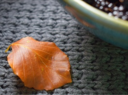 Autumn leaves - photography and food writing from Crumbs and Roses blog
