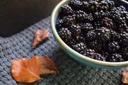 Bowlfuls of brambles - food photography and writing from Crumbs and Roses